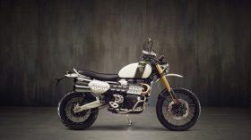 Triumph Scrambler 1200 24