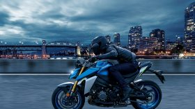 Suzuki GSX S 1000 2021 168