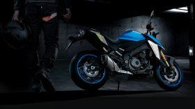 Suzuki GSX S 1000 2021 172