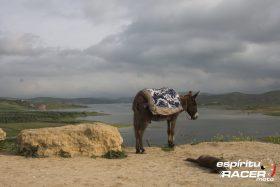 Marruecos En Moto 29