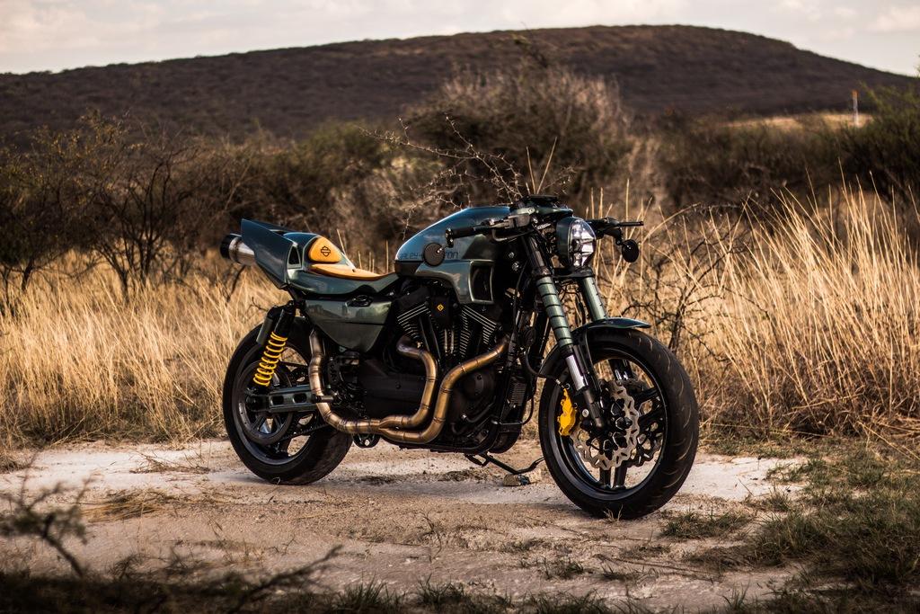 Apex Predator, de Harley-Davidson Querétaro, ganadora del King of Kings 2020