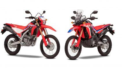 Honda CRF 300 L y 300 Rally 2021, las enduro-trail crecen en prestaciones