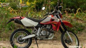 Prueba Honda XR 650 R 51